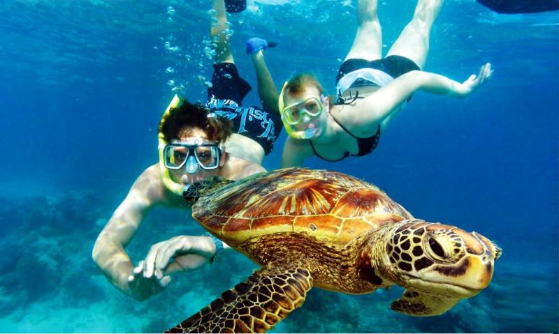 Top 6 Belize Tours