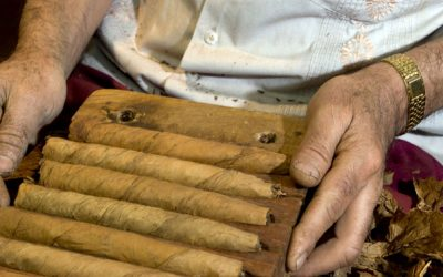 Common Commodities of Central America: Cigars